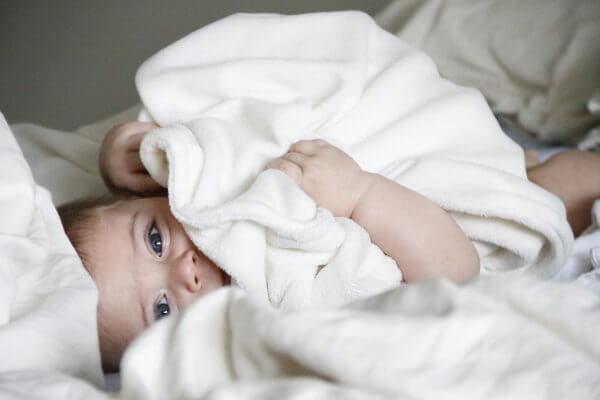 育てるタオル 人気