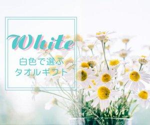 白いタオルギフト
