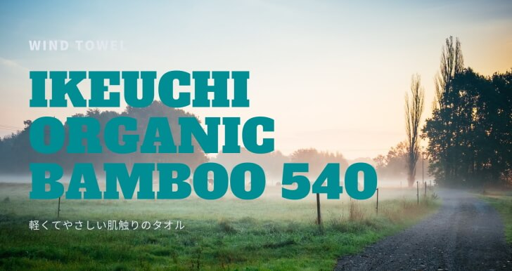 IKEUCHI Bamboo540